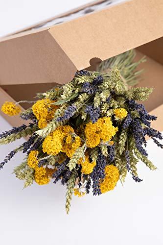 Sense of Home DIY Trockenblumen Box Ray of Sunshine- trendige und moderne Natur Deko aus getrockneten Blumen und Gräsern - pflegeleichter und langlebiger Trockenblumenstrauß - Naturprodukt aus Europa
