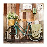 Cuadro de Bicicleta Vintage Verde de Lienzo para decoración de 80 x 80 cm France - LOLAhome