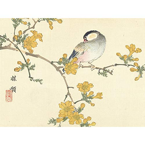 Kono Bairei Songbird op Bloeiende Tak Grote muur kunst Poster Print Dikke Papier 18X24 Inch