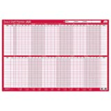 Sasco 2021 Staff Year Wall Planner with Wet Wipe Pen & Sticker Pack, Red, Poster Style, 915W x 610H mm, 2410141