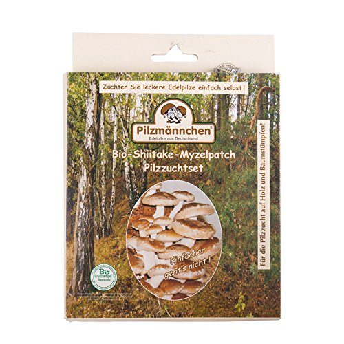 Bio Pilzzuchtset Shiitake, Myzelpatch