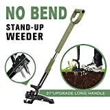 Homes Garden No Bend Stand-Up Manual Weeder 39'-47' Telescoping Long Handle Extendable D-Grip, Serrated Claws for...