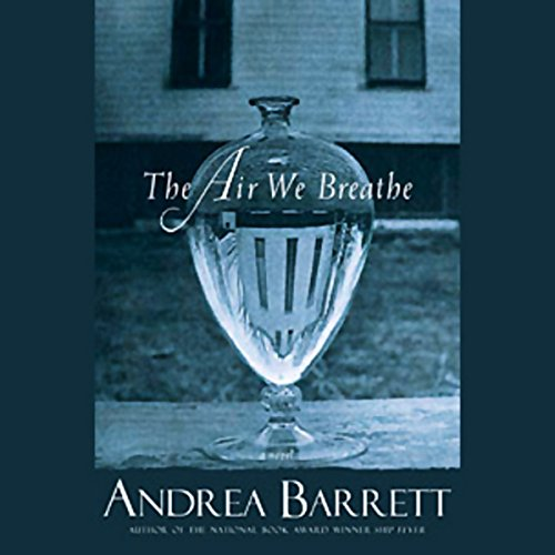 The Air We Breathe audiobook cover art