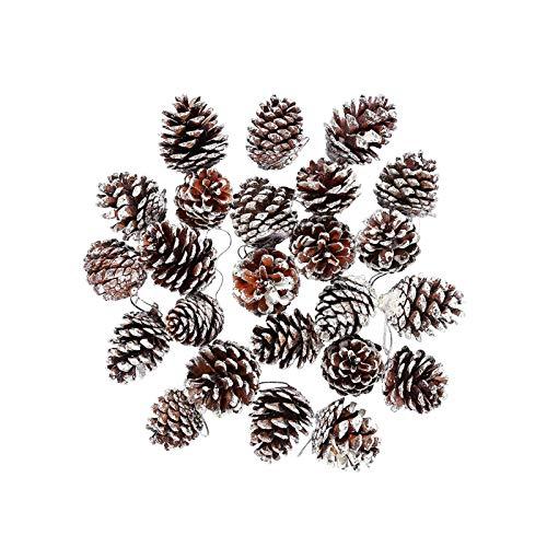 Mirrwin 30 Stück Natürliche Tannenzapfen Weihnachts Tannenzapfen Dekoration Anhänger Tannenzapfn Groß Dekokranz Tannenzapfen für Geschenkanhänger Weihnachtsbaum Party Hängende Dekoration (Weiß)