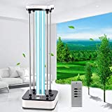 Area-with Ozone Lamp 110V 36W Light with 15s Delay Time Remote Controller Improve Home Light for Living (Black-White, Universal)