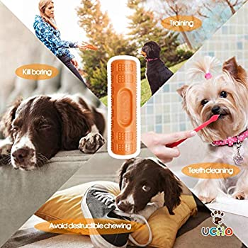 Jouet pour chien à mâcher agressivement - Jouet pour chien indestructible - Caoutchouc naturel non toxique - Nettoyage des dents - Jouet interactif pour chiens de petite et moyenne taille