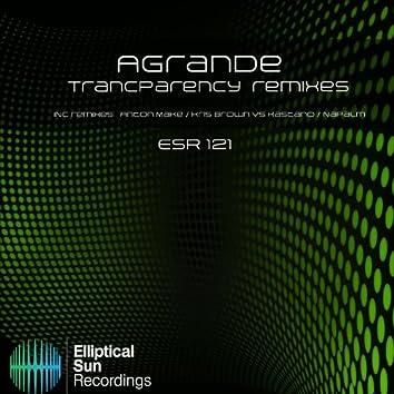 Transparency Remixes
