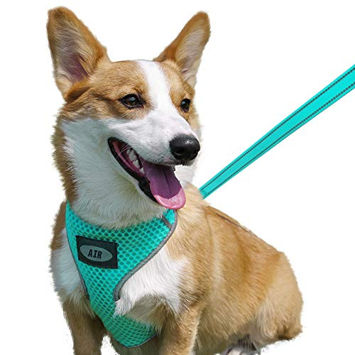 AIR Dog Harness Leash Set, Puppy Leash Harness, No-Choke Dog Harness, Mesh Dog Harness, Comfortable Dog Harness, Plus 4 ft Reflective Dog Leash with Padded Handle, Medium, Green