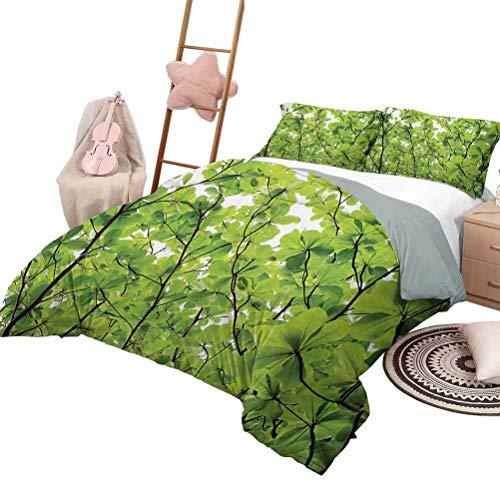 Juego de ropa de cama de edredón Colcha de hojas Cubierta de cama para todas las estaciones Primer plano Hojas de árbol desde un ángulo de levantamiento Plantas altas Verano Ambiente fresco Hábitat Ta