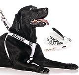 Arnés para perro Sordo, con código de color blanco y mango acolchado de neopreno de 60 cm, 1,2 m, 1,8 m, evita accidentes advirtiendo a otros de tu perro en adelantado (arnés y 1,2 m)