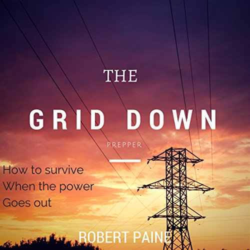 The Grid Down Prepper audiobook cover art