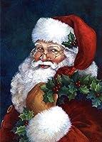 番号によるDIYペイントメリークリスマスサンタスノーホワイトクリスマスギフト子供と大人の初心者のための大人のデジタルアクリルペイントキット