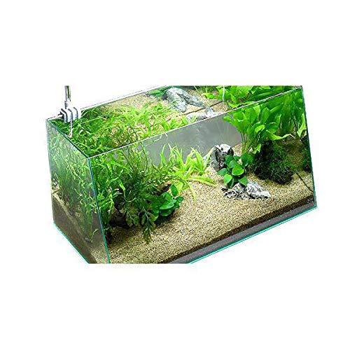 (水草)コリドラス用水草セット 60cm水槽用 風山石2個付 本州四国限定