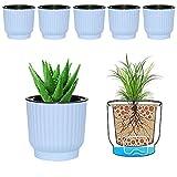 MOHENA Macetas de riego automático de 12cm con Cuerda Contton para Plantas de Interior, macetas de plástico para Todas Las Plantas de la casa, Flores, violetas africanas, Paquete Azul de 6