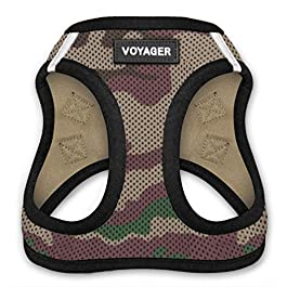 Voyager Step-in Air Dog Harness – All Weather Mesh, Step in Vest Harness for Small and Medium Dogs by Best Pet Supplies