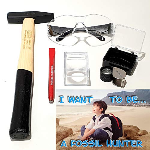 SilverGeo I Want to be Fossil Hunter – Kit Caza