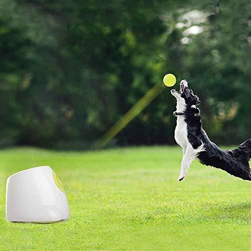 QINGTIAN Ultimate Throwing Toy Lanzador de Pelotas automático Interactivo Juguete para Perros,Máquina de lanzar Pelotas de Tenis para Entrenamiento de Perros,3 Pelotas Incluidas