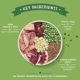 Zoom IMG-1 lily s kitchen cibo per