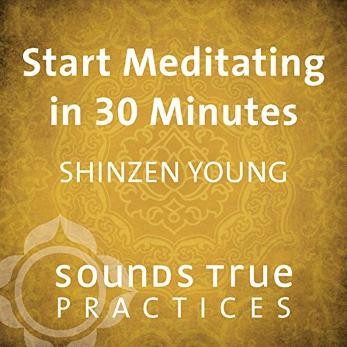 Start Meditating in 30 Minutes audiobook cover art