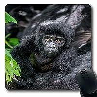 マウスパッドエモティレッドアフリカベビーマウンテンゴリラエコシステムウガンダブウィンディモンキー自然行動類人猿機関長方形滑り止めゲーミングマウスパッドラバー長方形マット