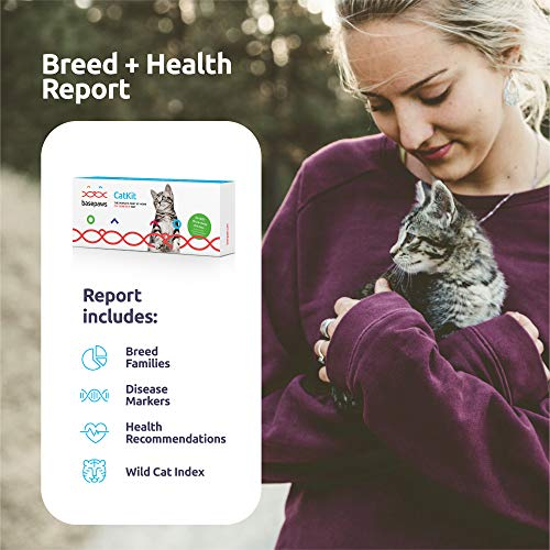 Basepaws Cat DNA Test Kit | Feline Breed Groups, Diseases and Traits | Cats DNA Testing Includes 17+ Genetic Diseases | Just Swab & Send a DNA Sample - Get Your Report in Just 4-6 Weeks
