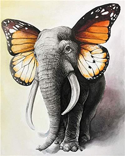 HAO Pintura de Orejas de Mariposa de Elefante por Kits de números Patrón preimpreso DIY Pintura Digital Hecha a Mano para Colorear sobre Lienzo por Usted Mismo 40x50cm Sin Marco
