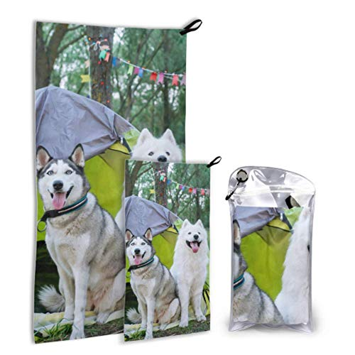 QYUESHANG Two Dogs in A Tent 2 Pack Microfiber Unique Beach Towel Shower Towel Set Fast Drying Best for Gym Travel Backpacking Yoga Fitnes