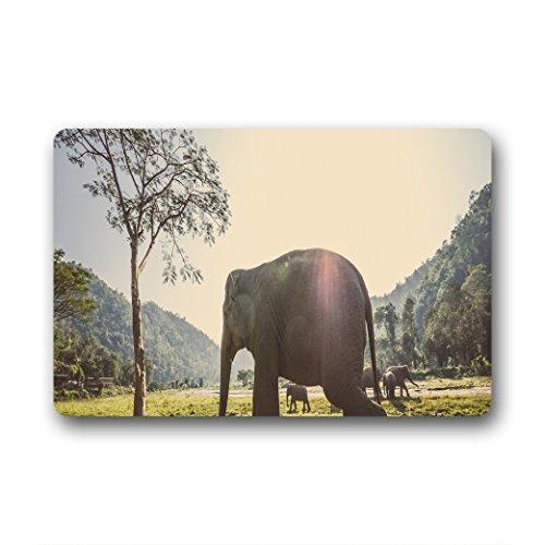 Doubee Design Éléphant Elephant Herzlich Paillasson Premium Tapis Anti-Poussière passwort 46 cm x 76 cm, Tissu, E, 18\