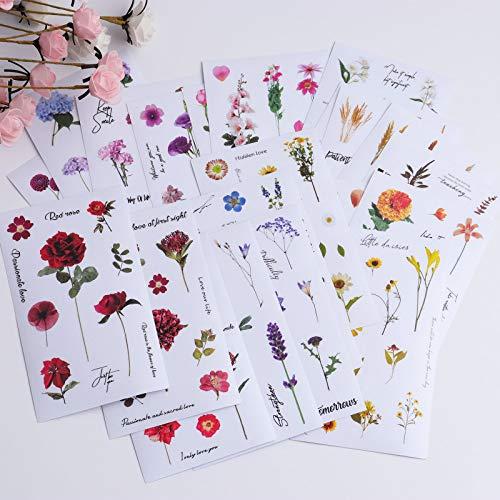 NogaMoga Pegatinas de Flores, 24 Hojas Pegatinas de Flores y Plantas, Sets de Pegatinas Decorativas Scrapbooking Stickers Transparentes Pegatinas para Bullet Journal, Álbumes de Recortes, Cuadernos