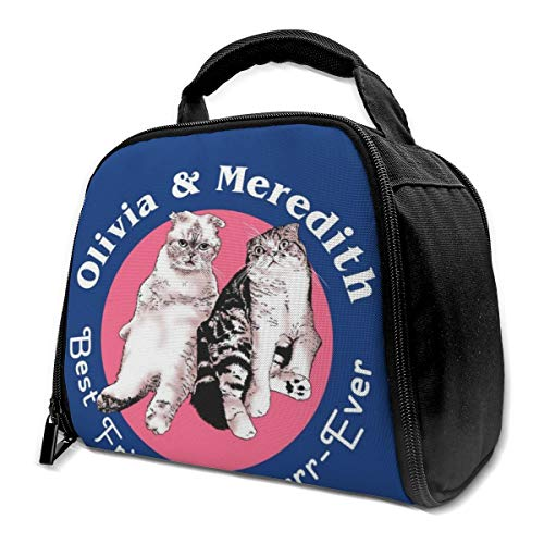 Olivia And Meredith Best Friends Reusable Insulation Bags Picnic Lunch Box For Adult And Kids, Lunch Cooler For Office Work