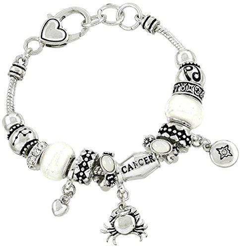Falari Zodiac Charm Bracelet Multi-Color Slide Metal Murano Beads Silvertone Cancer