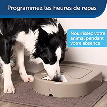 PetSafe - Distributeur de Nourriture et Croquettes Automatique Eatwell 5 Repas pour Animaux, Chiens et Chats - Programmable - Ecran LCD - Sans BPA, Plateau Lavable au Lave-vaisselle