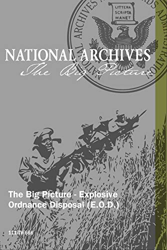 The Big Picture - Explosive Ordnance Disposal (E.O.D.)
