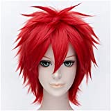 Flovex Short Straight Anime Cosplay Wigs Natural Sexy Costume Party Daily Hair (Red)