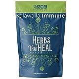 Kalawalla Immune Polypodium Leucotomos (Calaguala) Immune Support AI Protocol Support by AMG Naturals 500mg Capsules No Binders Skin Health Support