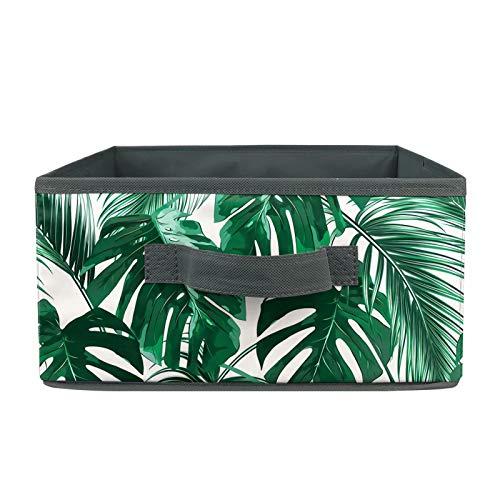chaqlin - Caja de colección de ropa interior con hojas tropicales para mujer, ropa interior, calcetines, bragas, ropa interior, calcetines, corbatas, lencería