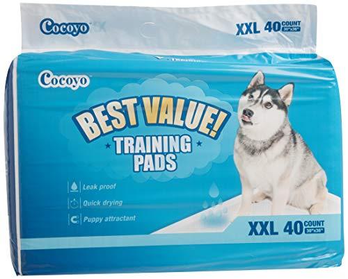COCOYO Training Pads, 30