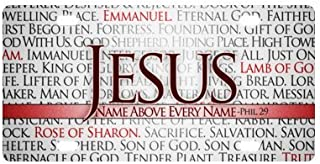 Jesus Quotes Christian Quotes License Plate Cover for Car (new)