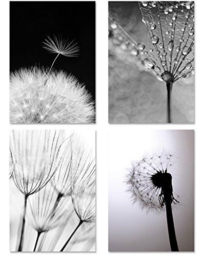 PICSonPAPER Poster 4er-Set PUSTEBLUMEN MONOCHROM, ungerahmt DIN A4, Kunstdruck, Poster, Dekoration, Wandbild, schwarz Weiss, Makroaufnahmen