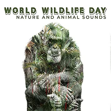 World Wildlife Day: Nature and Animal Sounds to Take a Break from Civilization, Return to the Sources