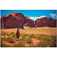 YQQICC 馬アメリカアリゾナモニュメントバレー砂漠野生の西自然ポスターアート壁の装飾カスタムプリント-50x70cmフレームなし