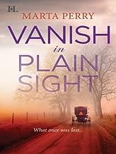 Vanish in Plain Sight (Amish Suspense Book 2)