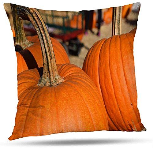 LisaArticles Pillowcase,Autumn Pumpkin Pumpkins Autumn Dirty Fall-Bauernhof-Festliches Lebensmittel Halloween, Mit Reißverschluss Kissenbezug Der Inneneinrichtung
