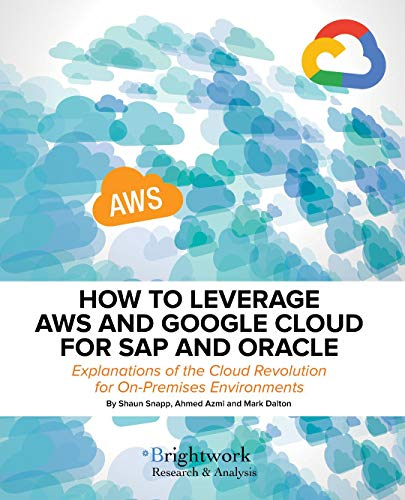 How to Leverage AWS and Google Cloud for SAP and Oracle: Explanations of the Cloud Revolution for On-Premises Environments (English Edition)