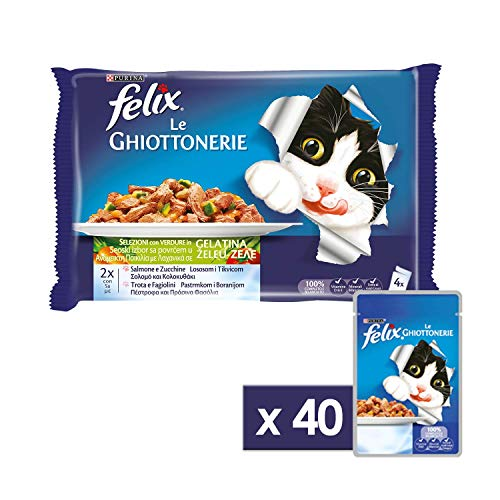 Felix Le Ghiottonerie Gatto con Salmone e Zucchine e con Trota e Fagiolini, 4 x 100 g - Confezione da 10 pezzi