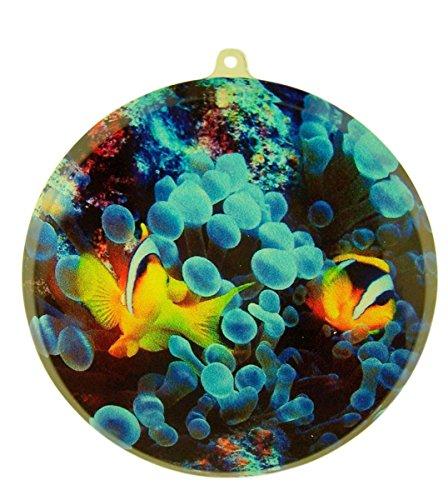 Grimm Acrylic Ocean Clown Fish Suncatcher Window Ornament, 3 1/2 Inch