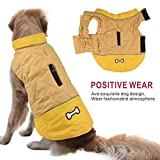 Zoom IMG-2 idepet impermeabile cappotto per cani