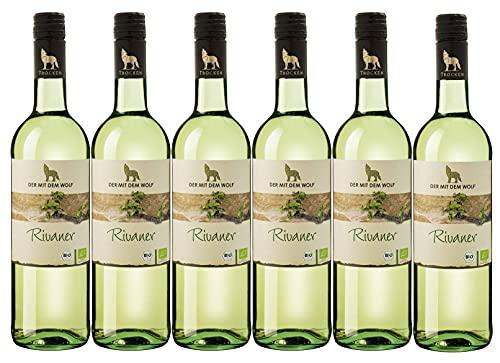 Winzergenossenschaft Wolfenweiler Baden Wein aus ökologisch erzeugten Trauben Rivaner QW trocken (6 x 0,75L)