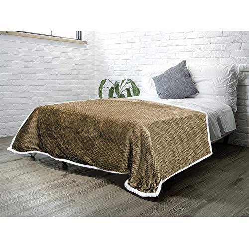 PAVILIA Sherpa Blanket Throw for Couch Sofa Bed | Taupe Tan Beige Super Soft, Plush Chevron Throw Fleece Blanket | Zig Zag Fuzzy Fluffy Decorative Blanket Microfiber, 60x80