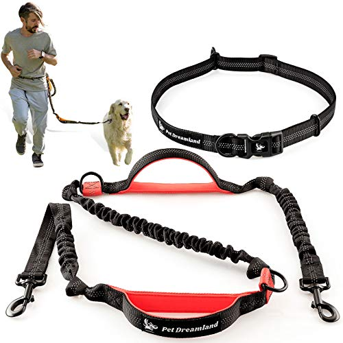 Retractable Hands Free Dog Leash with Triple Bungees System. Perfect for Running, Walking or Jogging with Your Dog (Available for Both Small or Large Dogs)